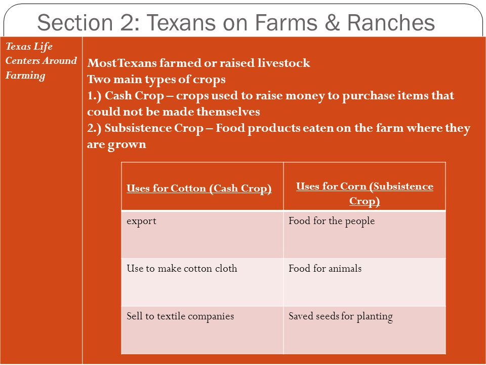 Section 2: Texans on Farms & Ranches Texas Life Centers Around Farming Most Texans farmed or raised livestock Two main types of crops 1.) Cash Crop –