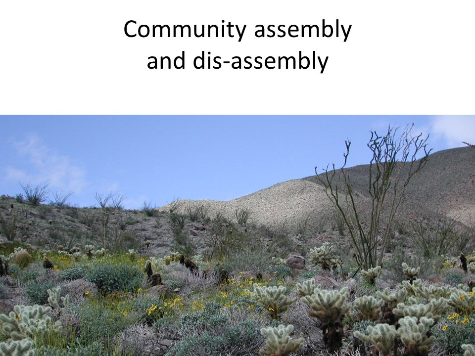 Community assembly and dis-assembly
