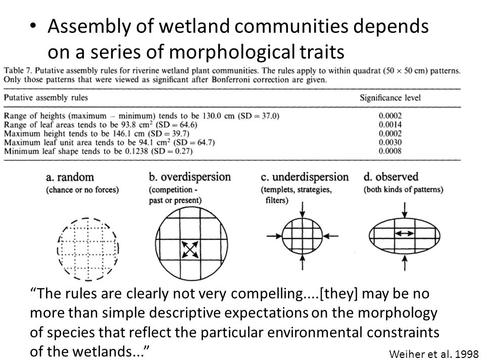 Assembly of wetland communities depends on a series of morphological traits Weiher et al.