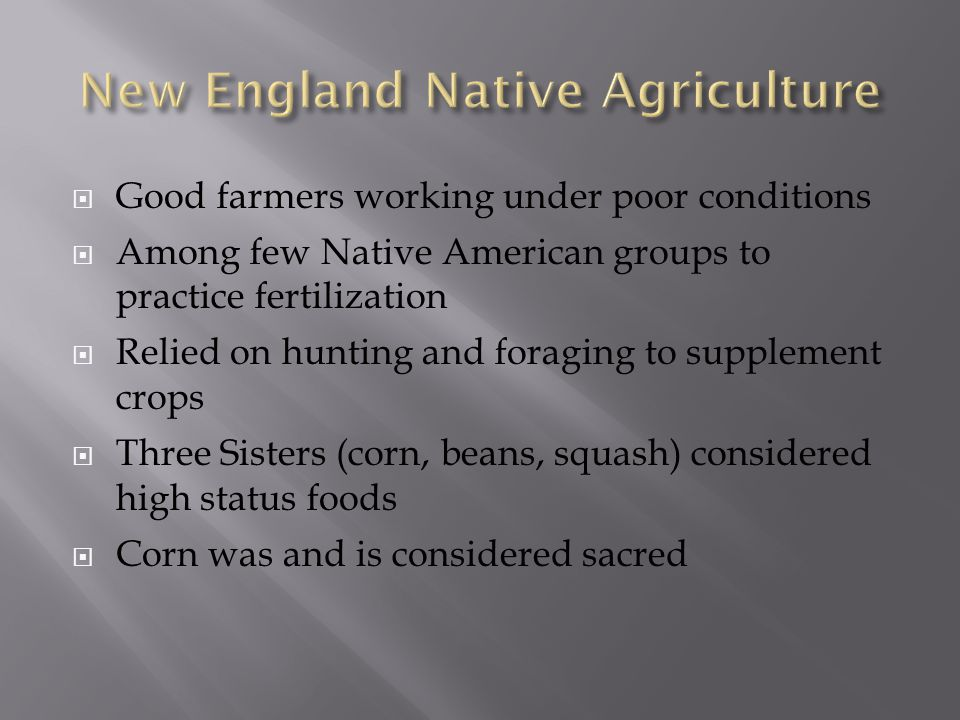  Good farmers working under poor conditions  Among few Native American groups to practice fertilization  Relied on hunting and foraging to supplement crops  Three Sisters (corn, beans, squash) considered high status foods  Corn was and is considered sacred