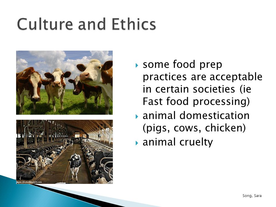  some food prep practices are acceptable in certain societies (ie Fast food processing)  animal domestication (pigs, cows, chicken)  animal cruelty