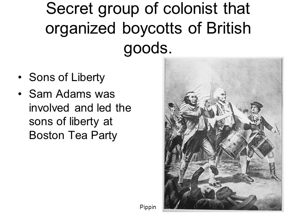 Pippin Secret group of colonist that organized boycotts of British goods.
