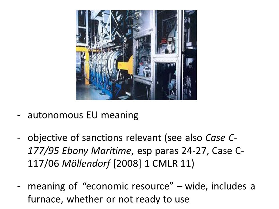 -autonomous EU meaning -objective of sanctions relevant (see also Case C- 177/95 Ebony Maritime, esp paras 24-27, Case C- 117/06 Möllendorf [2008] 1 CMLR 11) -meaning of economic resource – wide, includes a furnace, whether or not ready to use