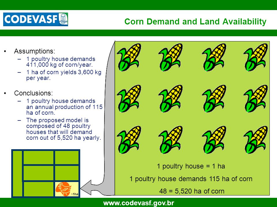 11 www.codevasf.gov.br Corn Demand and Land Availability Assumptions: –1 poultry house demands 411,000 kg of corn/year.
