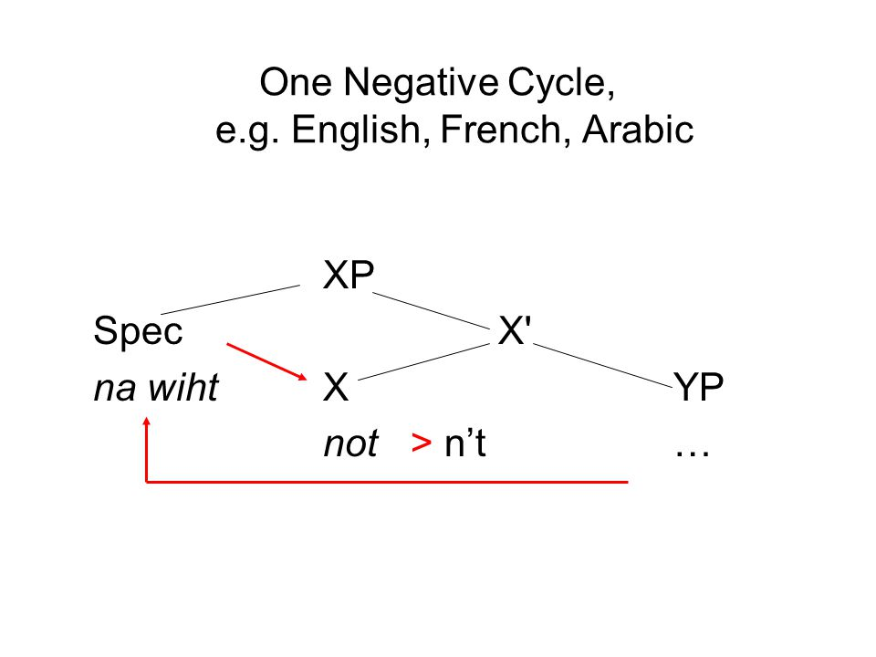 One Negative Cycle, e.g. English, French, Arabic XP SpecX' na wihtXYP not> n't…