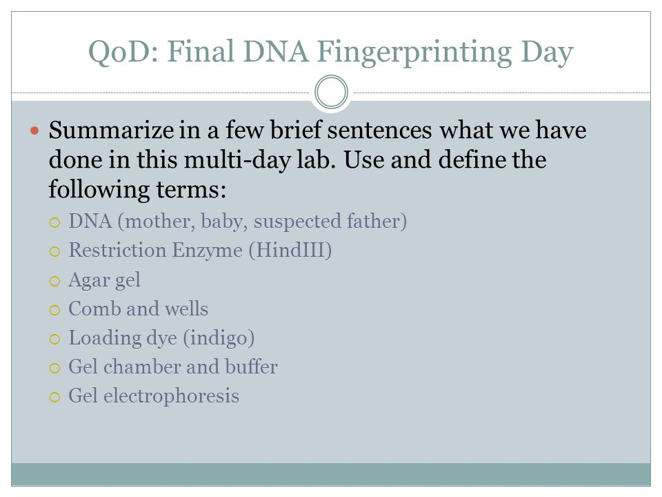 DAY ONE: CUTTING DNA WITH RESTRICTION ENZYME DAY TWO: CASTING GEL ADD LOADING DYE LOADING DNA RUNNING ELECTROPHORESIS DNA Fingerprinting