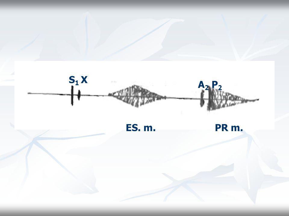 A 2 P 2 ES. m. S 1 X PR m.