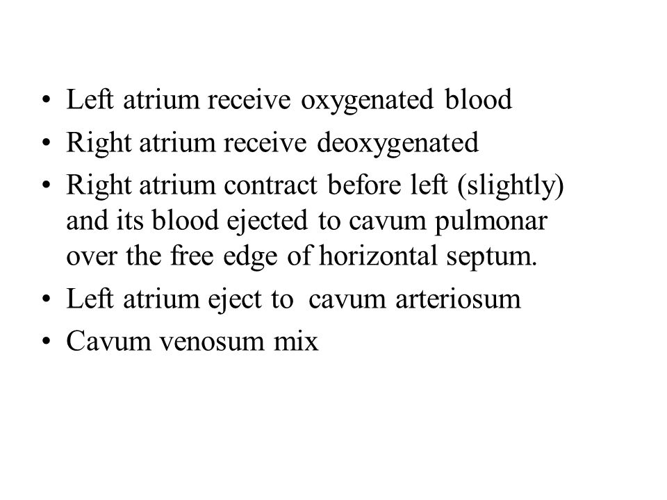 Left atrium receive oxygenated blood Right atrium receive deoxygenated Right atrium contract before left (slightly) and its blood ejected to cavum pul