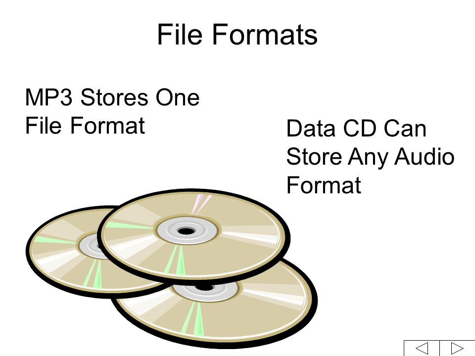File Formats MP3 Stores One File Format Data CD Can Store Any Audio Format