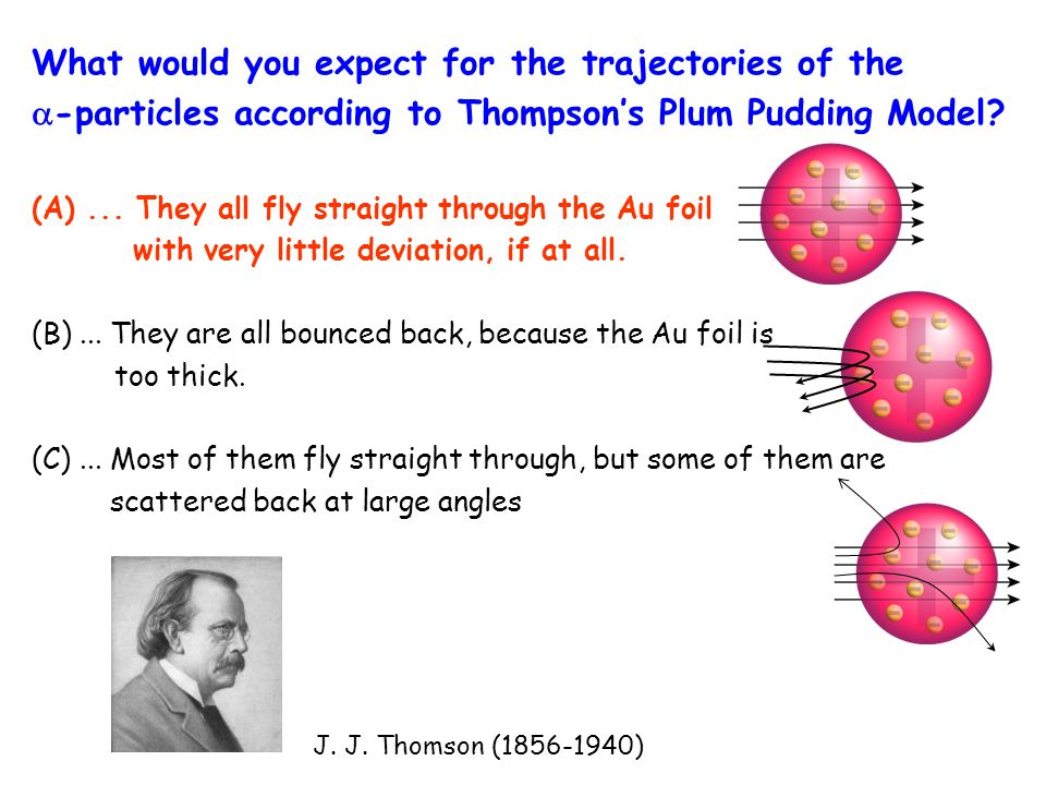 What would you expect for the trajectories of the  -particles according to Thompson's Plum Pudding Model? (A)... They all fly straight through the Au