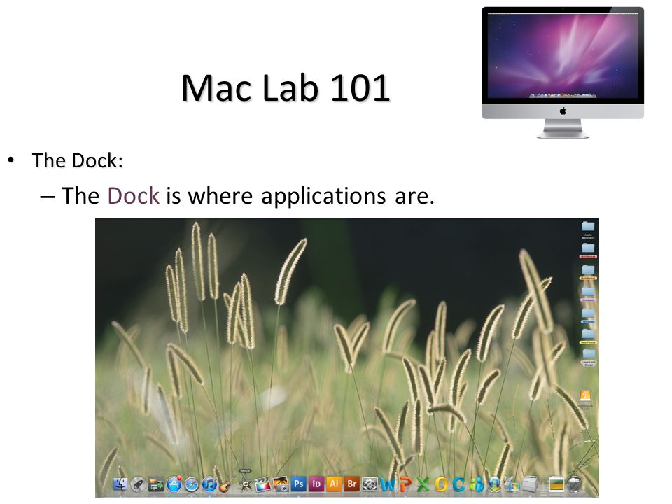 Mac Lab 101 The Dock: The Dock: – The Dock is where applications are.