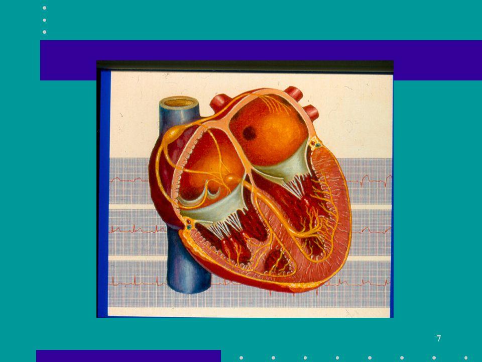 8 Heart Failure Risk Common Causes –Ischemic heart Disease –Diabetes –Hypertension –Valvular Heart Disease –ETOH Abuse –Obesity –Cigarette Smoking –Hyperlipidemia –Physical Inactivity –Sleep Apnea Less Common Causes –Familial Hypertrophic CM –Postpartum CM –Thyroid Abnormality –Connective Tissue Disorders –Toxin Exposure –Myocarditis –Sarcoidosis –Hemochromatosis –Medication Exposure