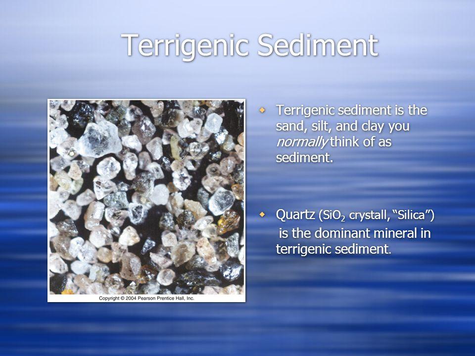 Terrigenic Sediment