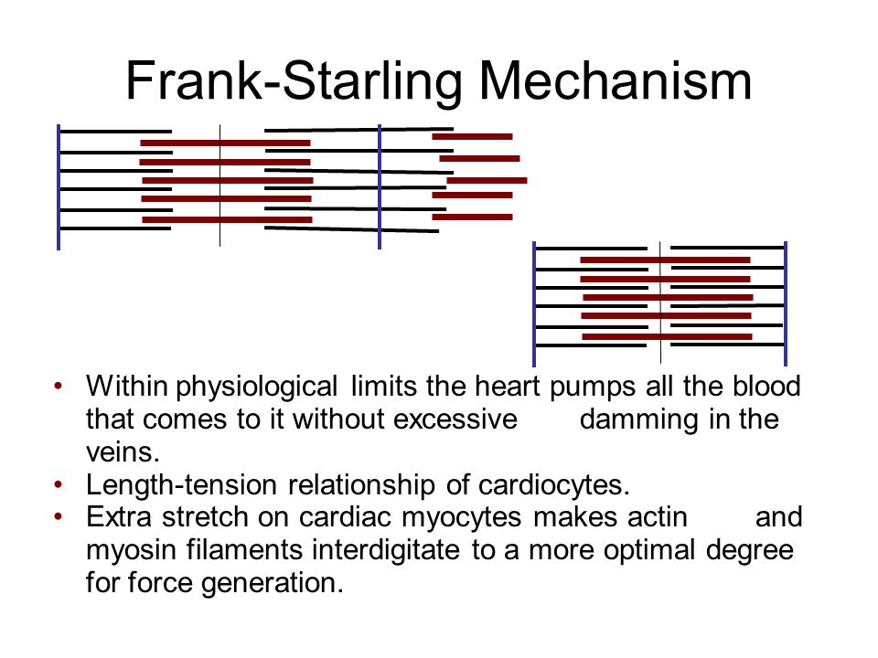 Frank-Starling Mechanism Within physiological limits the heart pumps all the blood that comes to it without excessive damming in the veins.