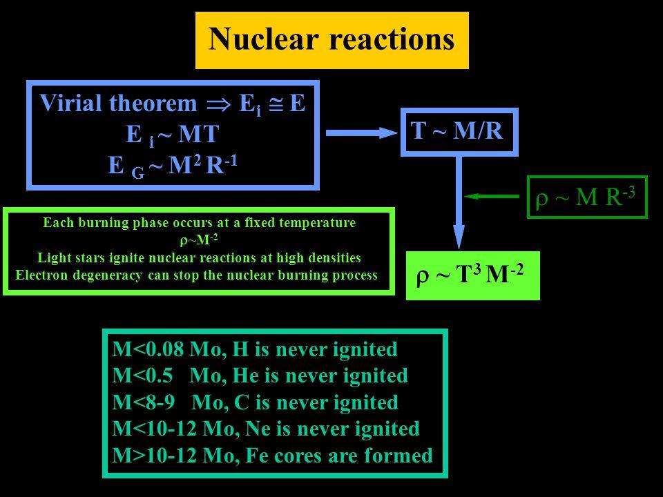 Nuclear reactions Virial theorem  E i  E E i ~ MT E G ~ M 2 R -1 T ~ M/R  ~ T 3 M -2  ~ M R -3 Each burning phase occurs at a fixed temperature 