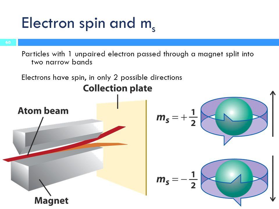 Electron spin and m s Particles with 1 unpaired electron passed through a magnet split into two narrow bands Electrons have spin, in only 2 possible d