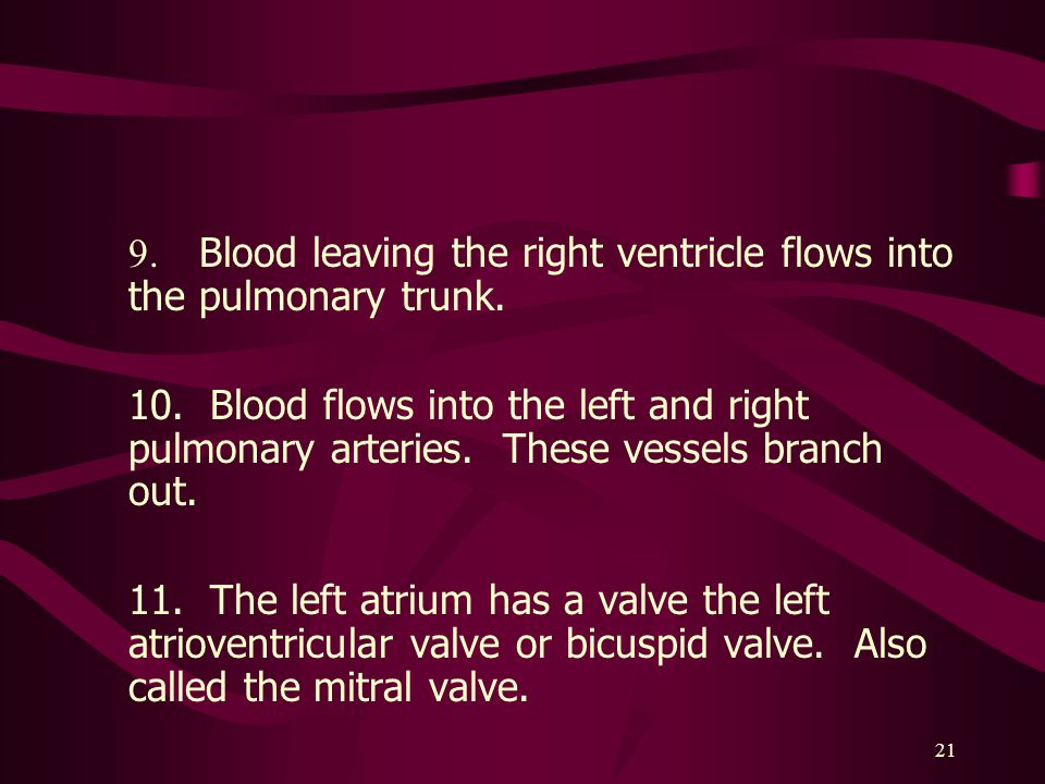 21 9.Blood leaving the right ventricle flows into the pulmonary trunk.