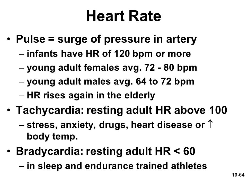 19-64 Heart Rate Pulse = surge of pressure in artery –infants have HR of 120 bpm or more –young adult females avg. 72 - 80 bpm –young adult males avg.