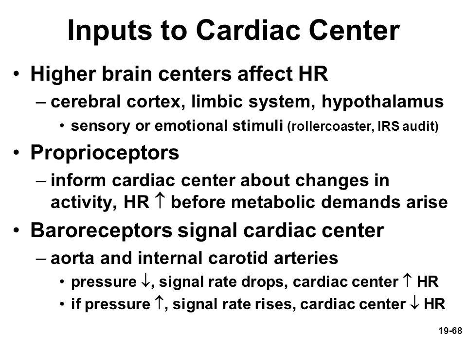 19-68 Inputs to Cardiac Center Higher brain centers affect HR –cerebral cortex, limbic system, hypothalamus sensory or emotional stimuli (rollercoaste