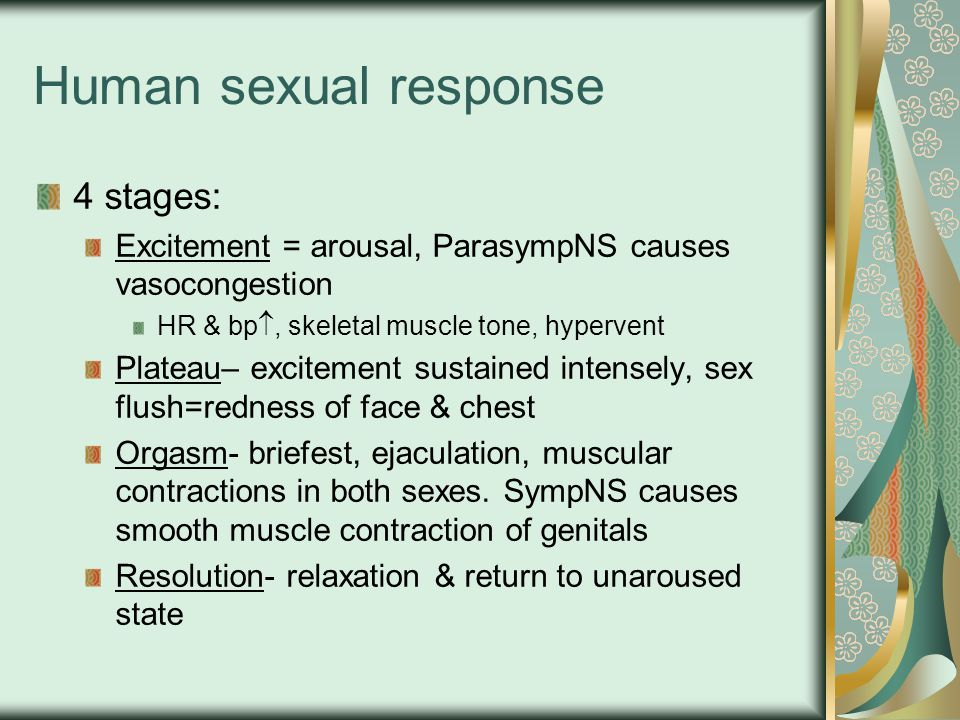 Human sexual response 4 stages: Excitement = arousal, ParasympNS causes vasocongestion HR & bp , skeletal muscle tone, hypervent Plateau– excitement