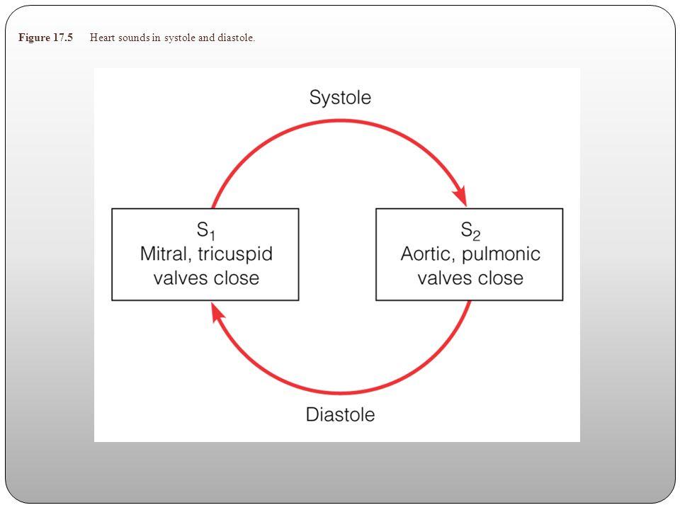 Table 17.3 Distinguishing Heart Murmurs
