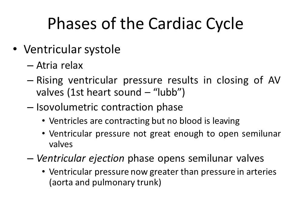 """Phases of the Cardiac Cycle Ventricular systole – Atria relax – Rising ventricular pressure results in closing of AV valves (1st heart sound – """"lubb"""")"""