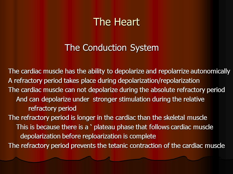 The Heart The Conduction System The Conduction System The cardiac muscle has the ability to depolarize and repolarrize autonomically A refractory peri