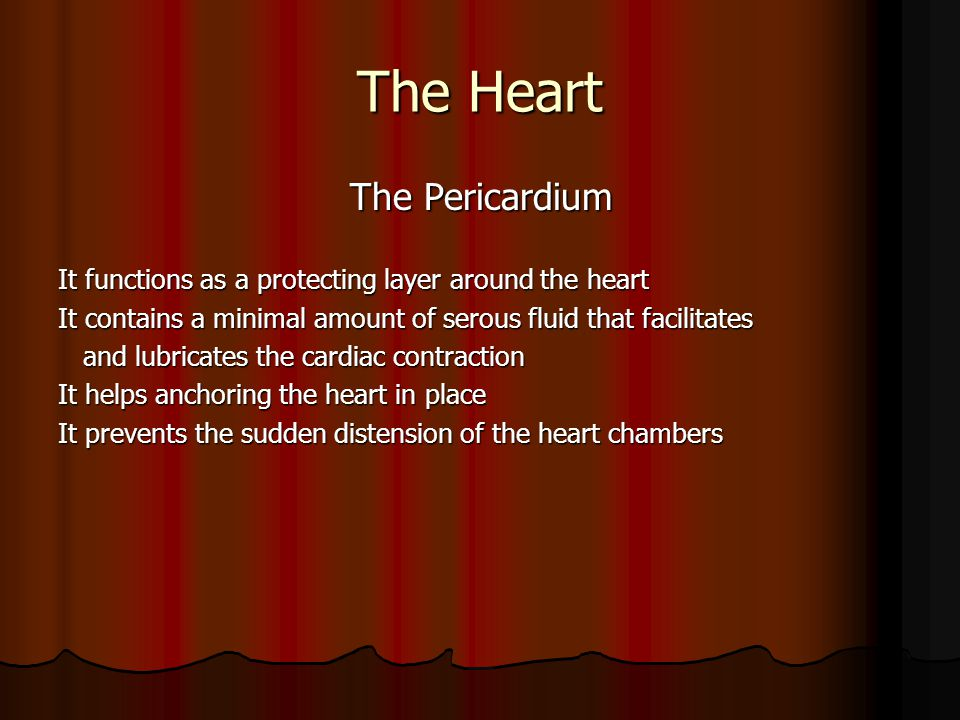 The Heart The Conduction System The Conduction System The conduction system Initiates and spreads action potential (an electric current) to cardiac muscle fibers The spread (conduction) takes place through specialized cardiac muscle Action potential consists of depolarization and repolarization cycles Depolarization depends on the flux of Na + and Ca++ into the cell through their specific gates their specific gates Ca ++ gates open and close slower than Na+ gates Repolarization occurs as a result of the closure of Ca ++ and opening of K+ gates of K+ gates The cardiac muscle has the ability to depolarize and repolarrize autonomically A refractory period takes place during depolarization/repolarization