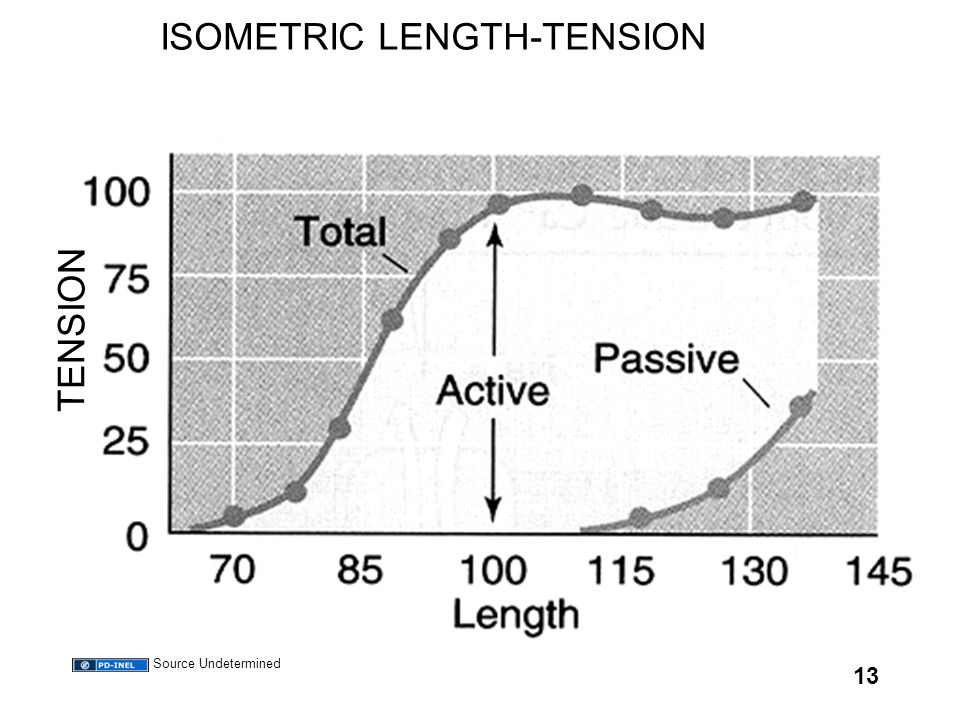 13 ISOMETRIC LENGTH-TENSION TENSION Source Undetermined
