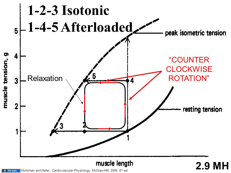 "21 1-2-3 Isotonic 1-4-5 Afterloaded 2.9 MH Relaxation ""COUNTER CLOCKWISE ROTATION"" Mohrman and Heller. Cardiovascular Physiology. McGraw-Hill, 2006. 6"