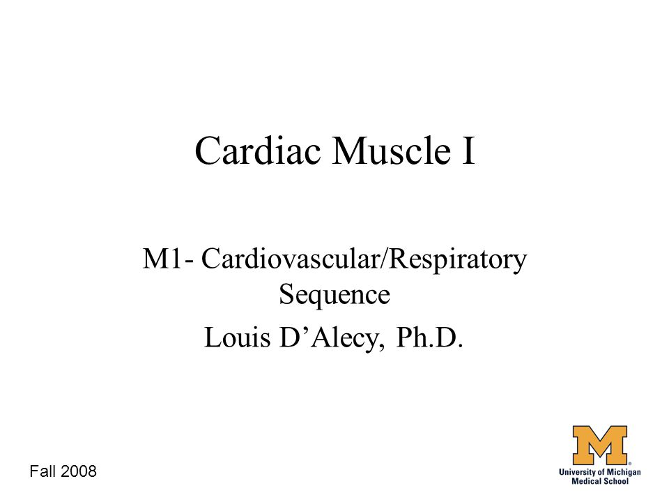3 Cardiac Muscle I M1- Cardiovascular/Respiratory Sequence Louis D'Alecy, Ph.D. Fall 2008