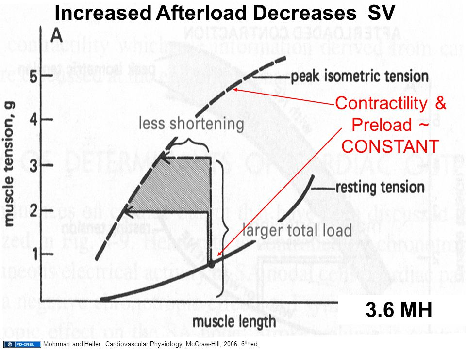 42 3.6 MH Increased Afterload Decreases SV Contractility & Preload ~ CONSTANT Mohrman and Heller. Cardiovascular Physiology. McGraw-Hill, 2006. 6 th e