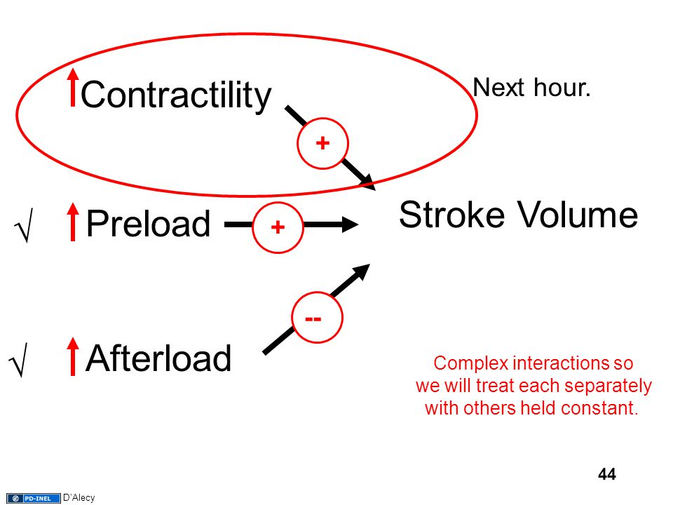 44 Stroke Volume ContractilityAfterload Preload ++-- Complex interactions so we will treat each separately with others held constant. √ √ Next hour. D