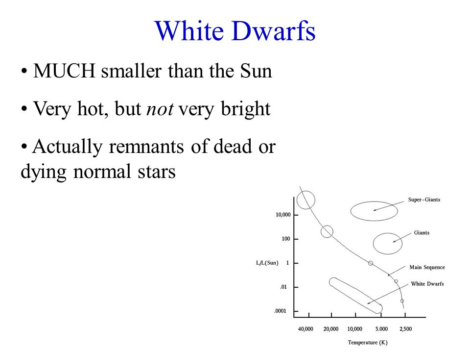 White Dwarfs MUCH smaller than the Sun Very hot, but not very bright Actually remnants of dead or dying normal stars