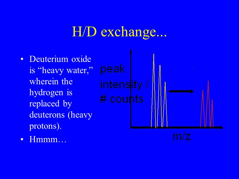 """H/D exchange... Deuterium oxide is """"heavy water,"""" wherein the hydrogen is replaced by deuterons (heavy protons). Hmmm…"""