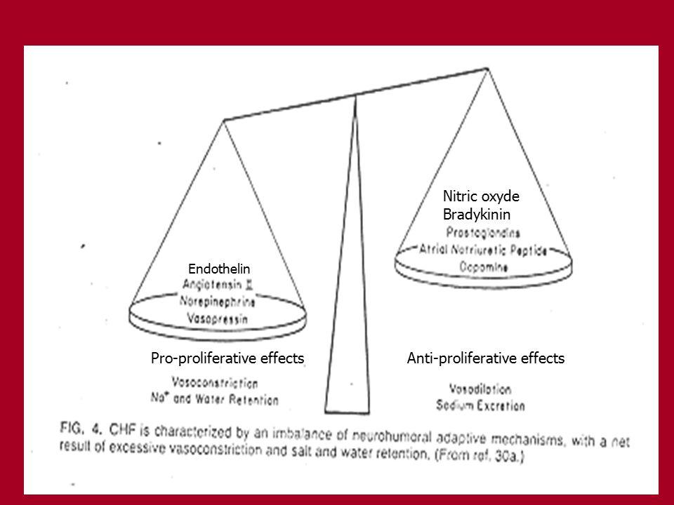 Endothelin Nitric oxyde Bradykinin Pro-proliferative effects Anti-proliferative effects