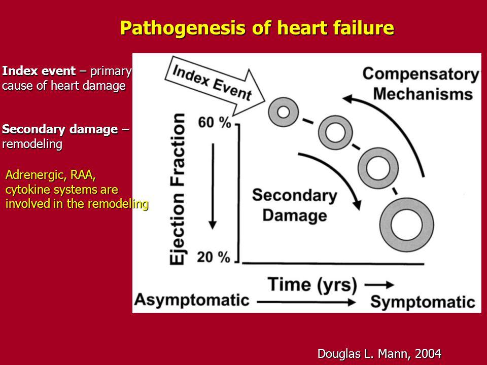 Pathogenesis of heart failure Douglas L. Mann, 2004 Index event – primary cause of heart damage Secondary damage – remodeling Adrenergic, RAA, cytokin