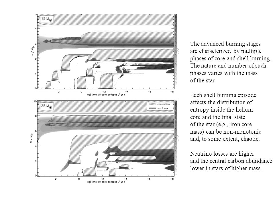 The advanced burning stages are characterized by multiple phases of core and shell burning.