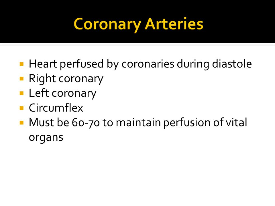 Left coronary perfuses left ventricle, septum, chordae tendinae, papullary muscle and portion of right ventricle  Right coronary—supplies right atrium, right ventricle, inferior portion of left ventricle