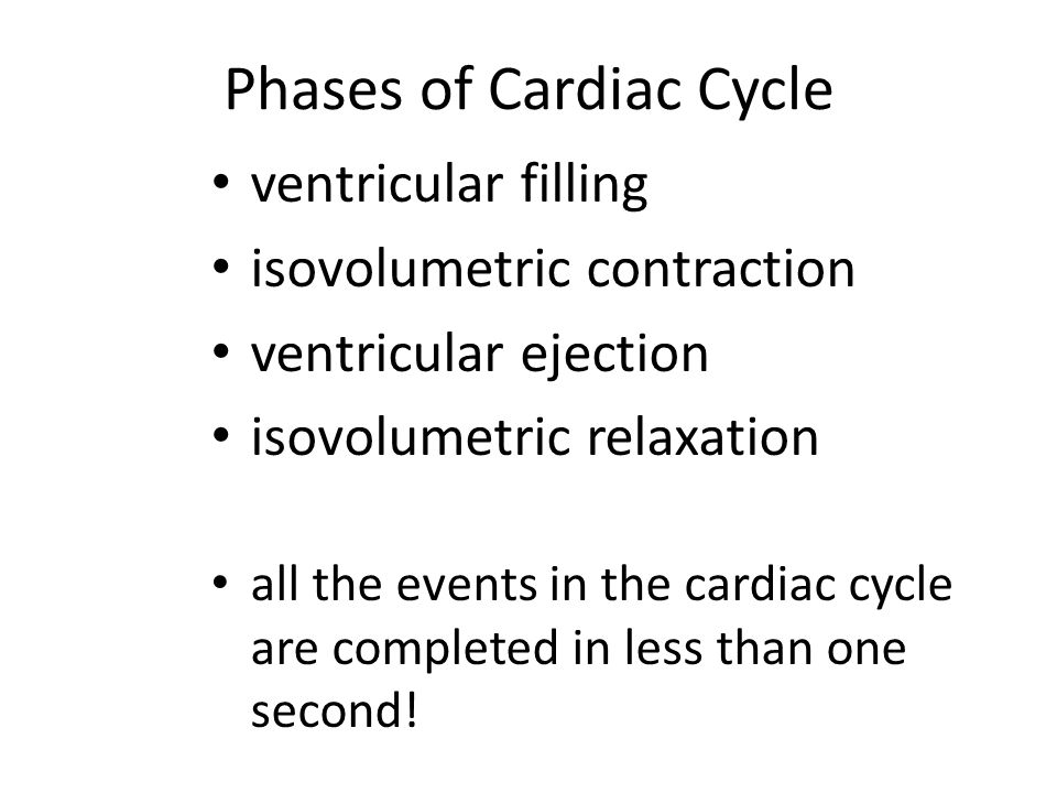 Phases of Cardiac Cycle ventricular filling isovolumetric contraction ventricular ejection isovolumetric relaxation all the events in the cardiac cycl