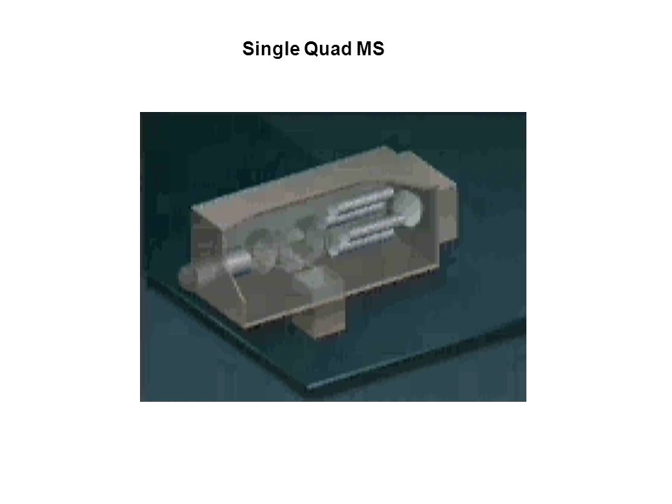 Single Quad MS