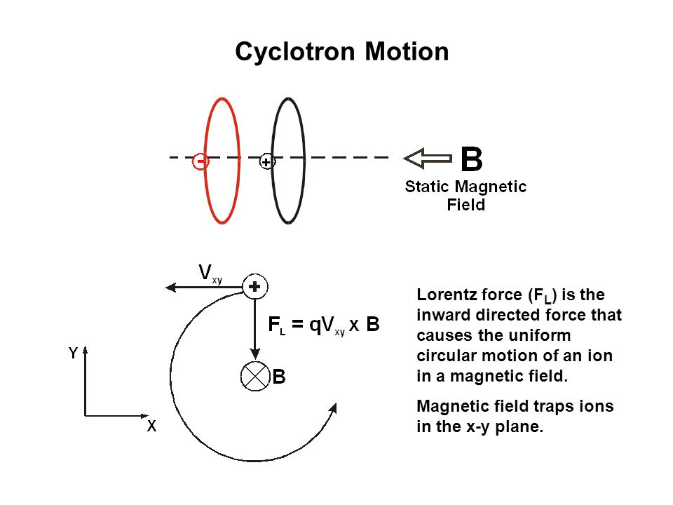 Cyclotron Motion Lorentz force (F L ) is the inward directed force that causes the uniform circular motion of an ion in a magnetic field.