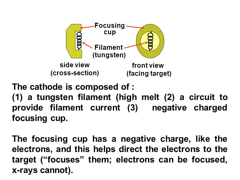 Focusing cup Filament (tungsten) side view (cross-section) front view (facing target) The cathode is composed of : (1) a tungsten filament (high melt