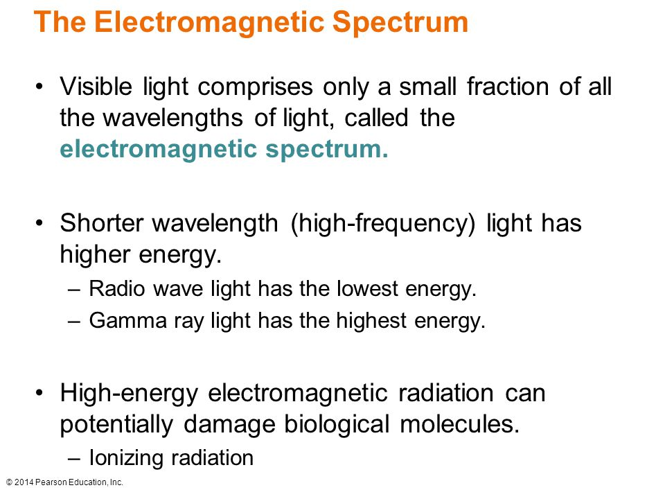 The Electromagnetic Spectrum Visible light comprises only a small fraction of all the wavelengths of light, called the electromagnetic spectrum.