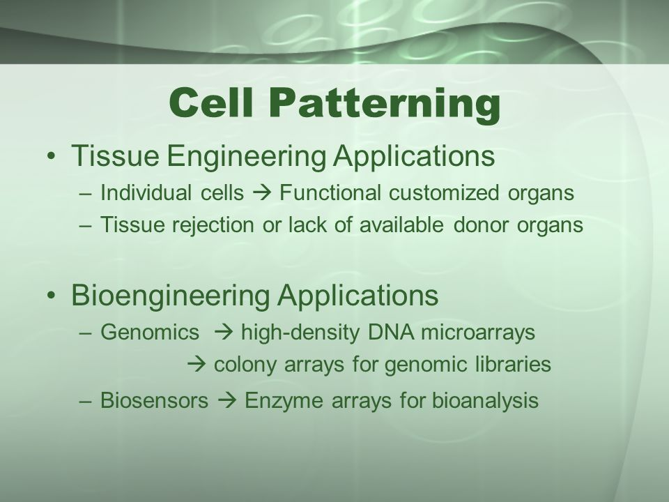 Cell Patterning Tissue Engineering Applications –Individual cells  Functional customized organs –Tissue rejection or lack of available donor organs B