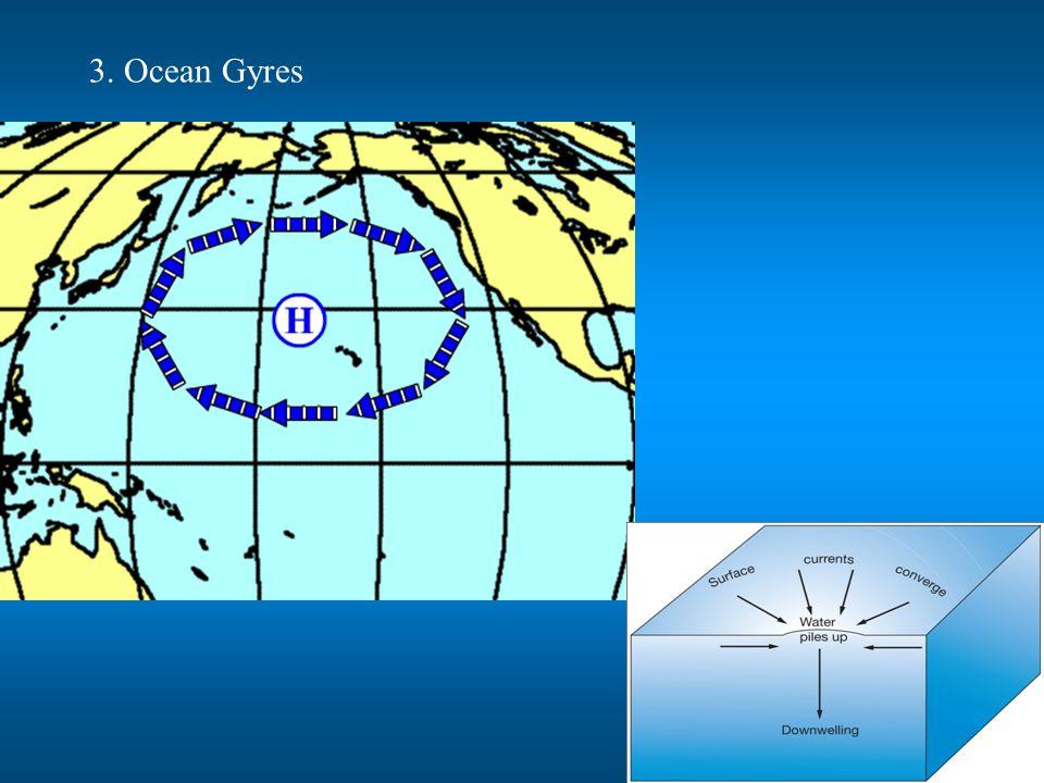 3. Ocean Gyres