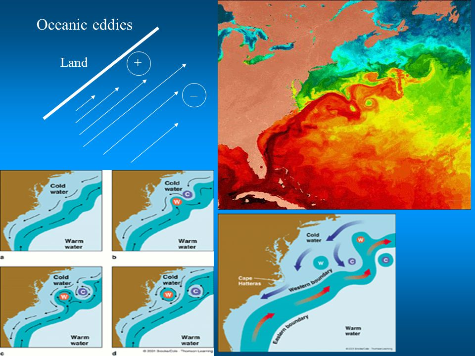Oceanic eddies + _ Land