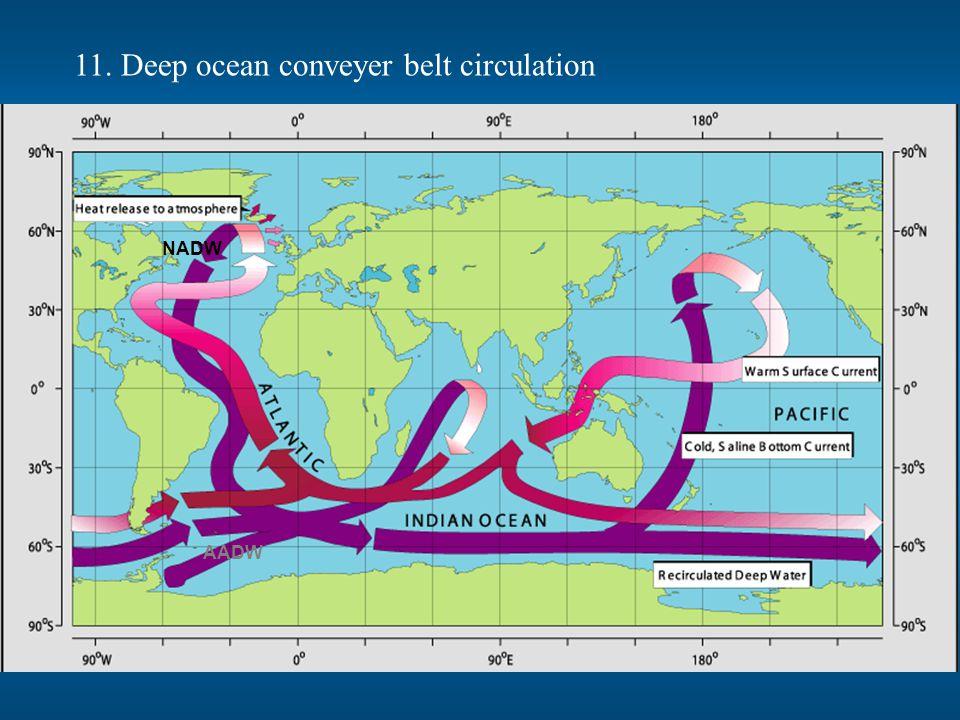 11. Deep ocean conveyer belt circulation NADW AADW
