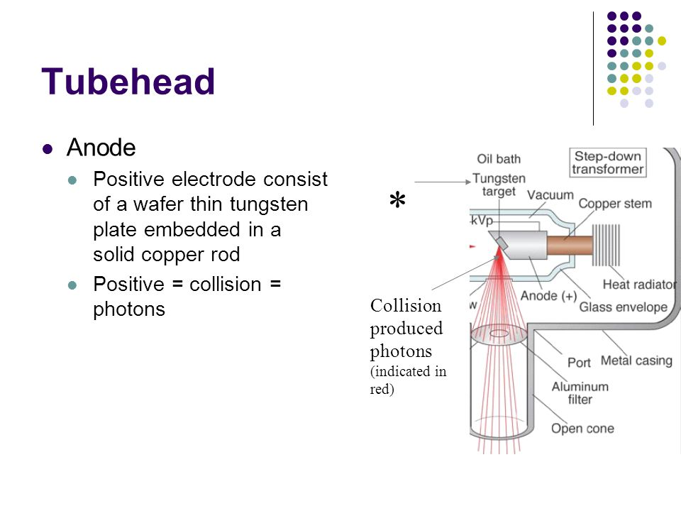 Tubehead Cathode Negative electrode consist of tungsten filament held in a cup shaped holder made of molybdenum Negative = electrons, therefore electr