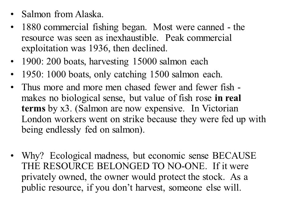 Salmon from Alaska. 1880 commercial fishing began.